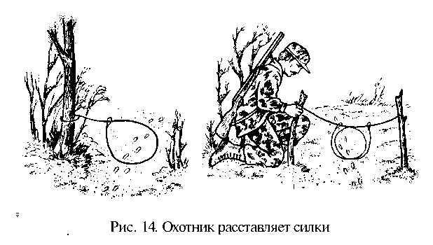 Силок для зайца своими руками